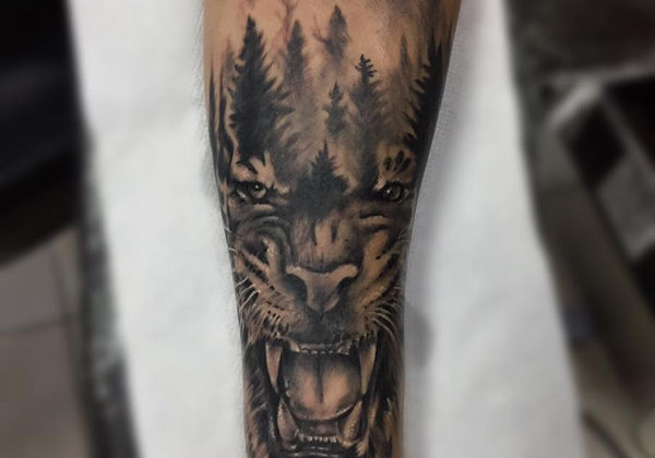Black and grey realism tiger with a forest fading in on the top of its head