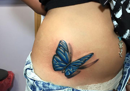 Realistic color butterfly